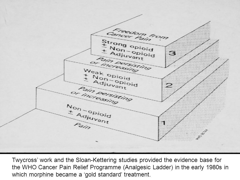 Twycross' work and the Sloan-Kettering studies provided the evidence base for the WHO Cancer Pain Relief Programme (Analgesic Ladder) in the early 1980s in which morphine became a 'gold standard' treatment.