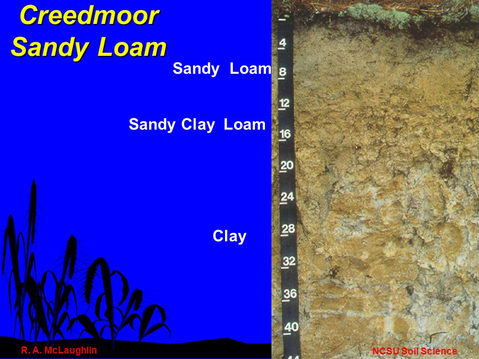 Soil Erodibility (cont.) All Soils Are Not Created Equal n Structure –Blocky, platy, or massive are less erodible than granular.