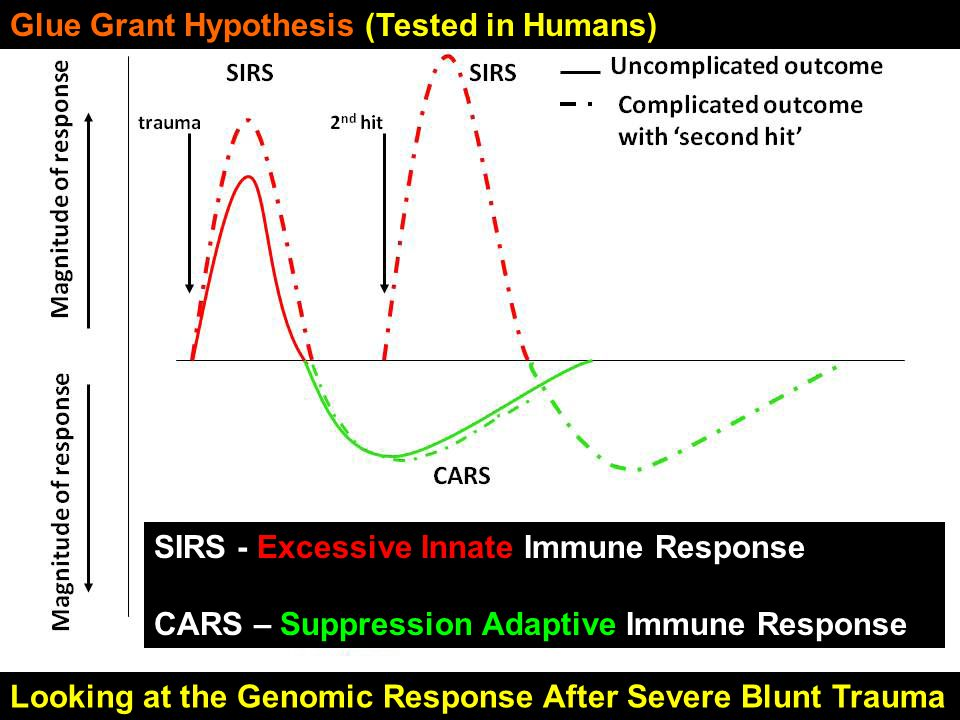Glue Grant Hypothesis (Tested in Humans) SIRS - Excessive Innate Immune Response CARS – Suppression Adaptive Immune Response Looking at the Genomic Response After Severe Blunt Trauma