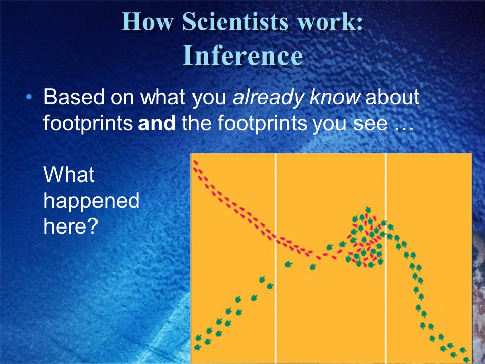 How Scientists work: Inference Based on what you already know about footprints and the footprints you see … What happened here