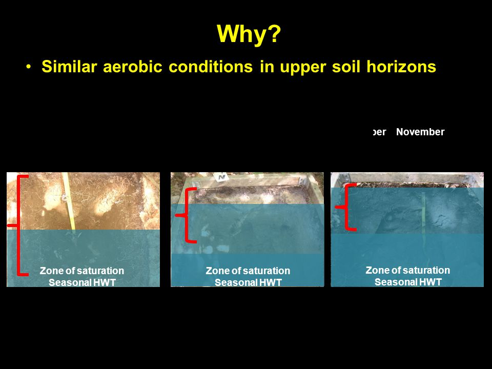 Why? Similar aerobic conditions in upper soil horizons Zone of saturation Seasonal HWT AprilMayJuneJuly AugustSeptemberOctoberNovember March Zone of s
