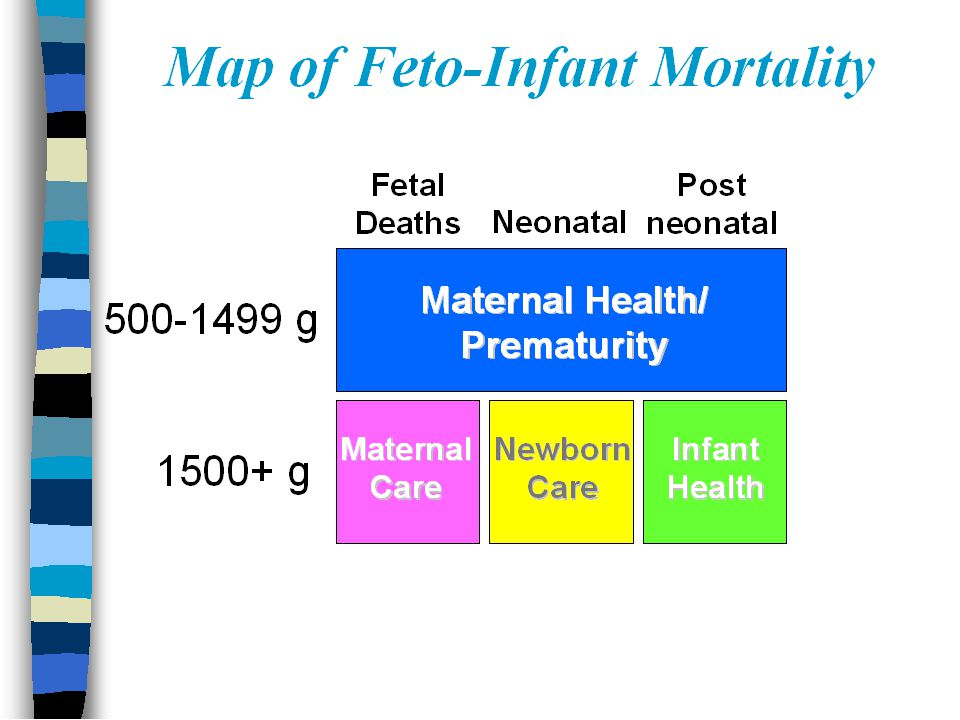 Linked Birth & Death Certificates Infant Deaths Live Birth Certificate Birth Characteristics Infant Death Certificate Death Characteristics Fetal Deaths Fetal Death Certificate
