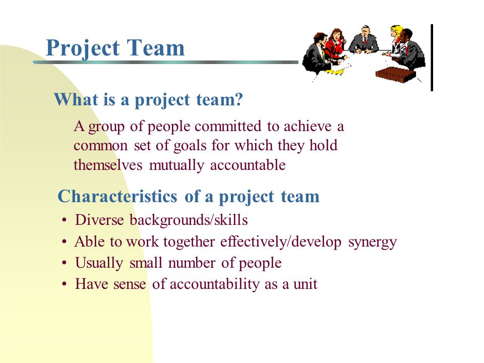 Responsibilities of a Project Manager To the organization and top management Meet budget and resource constraints Engage functional managers To the project team Provide timely and accurate feedback Keep focus on project goals Manage personnel changes To the client Communicate in timely and accurate manner Provide information and control on changes/modifications Maintain quality standards To the subcontractors Provide information on overall project status