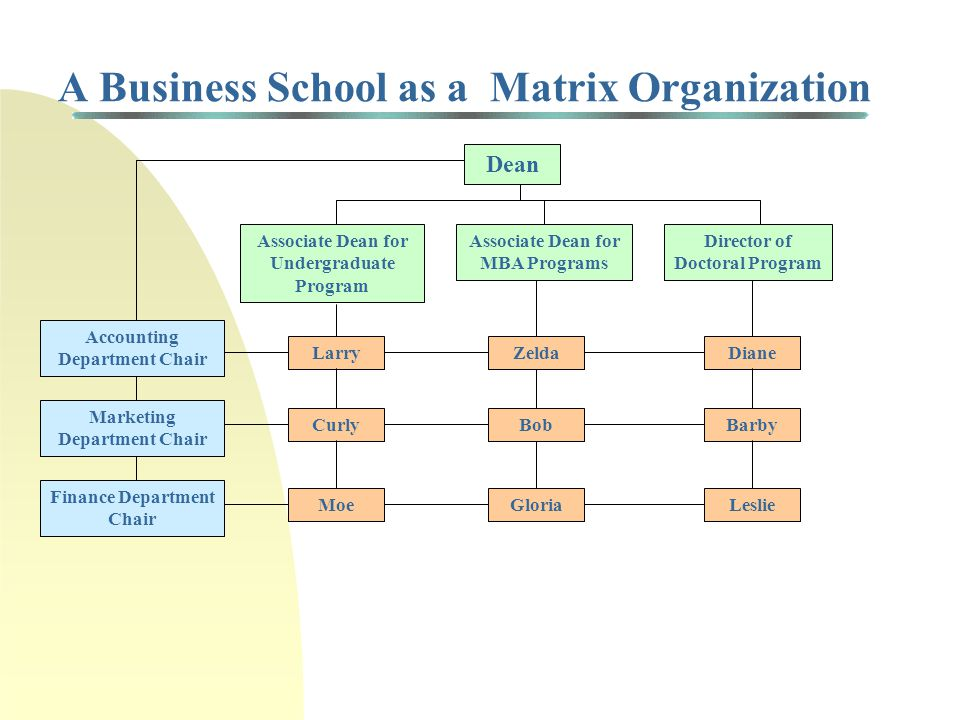 Project Organization Continuum Project Team Organization Project Matrix Project fully managed by functional managers Project fully managed by project team manager Functional Organization Functional Matrix Balanced Matrix