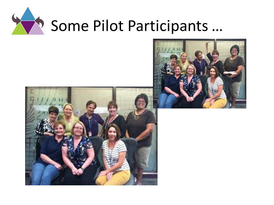 Some Pilot Participants …