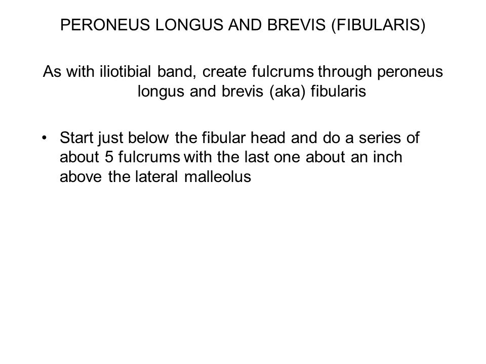 PERONEUS LONGUS AND BREVIS (FIBULARIS) As with iliotibial band, create fulcrums through peroneus longus and brevis (aka) fibularis Start just below the fibular head and do a series of about 5 fulcrums with the last one about an inch above the lateral malleolus