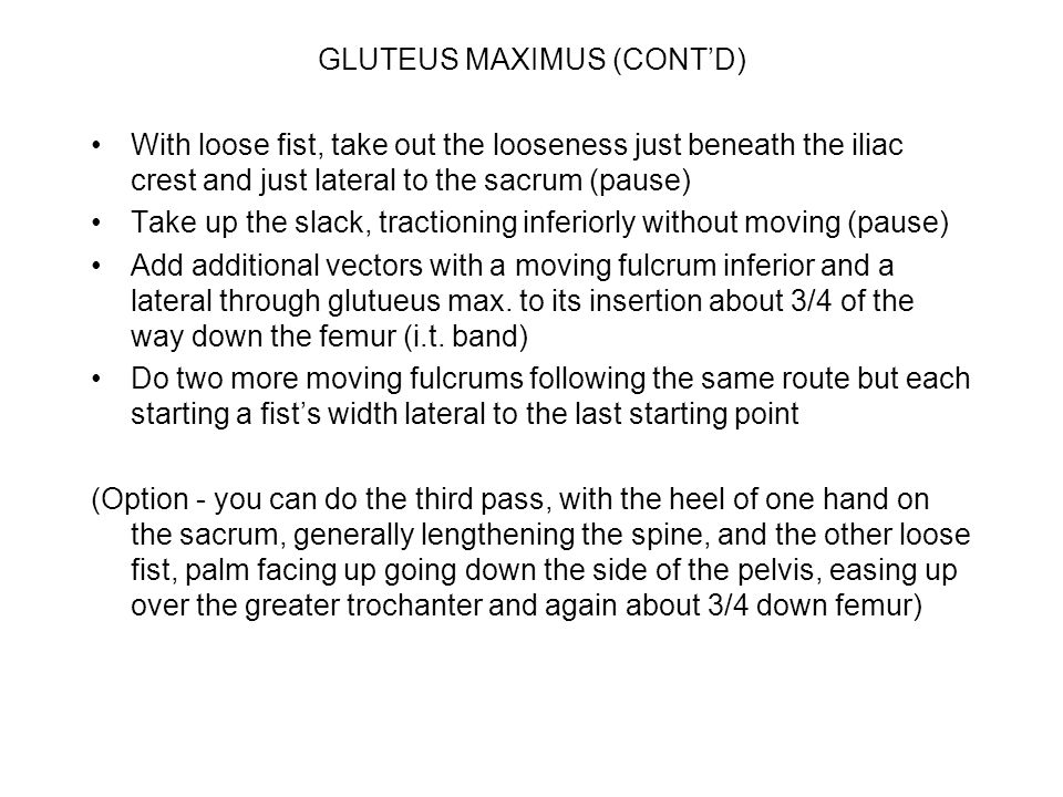 GLUTEUS MAXIMUS (CONT'D) With loose fist, take out the looseness just beneath the iliac crest and just lateral to the sacrum (pause) Take up the slack, tractioning inferiorly without moving (pause) Add additional vectors with a moving fulcrum inferior and a lateral through glutueus max.