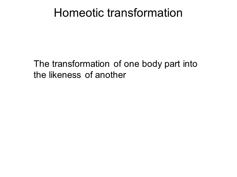 Homeotic transformation The transformation of one body part into the likeness of another
