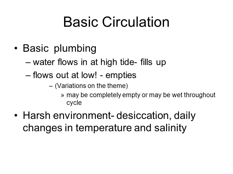 Basic Circulation Basic plumbing –water flows in at high tide- fills up –flows out at low! - empties –(Variations on the theme) »may be completely emp