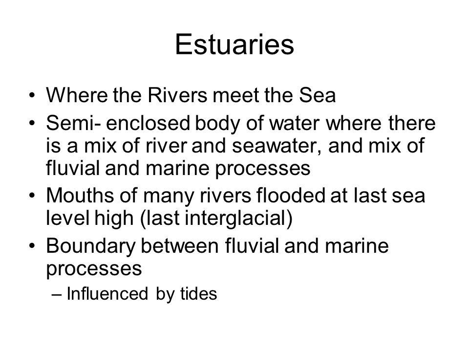 Types of Estuaries Drowned river valley Fjord Bar- built Tectonic