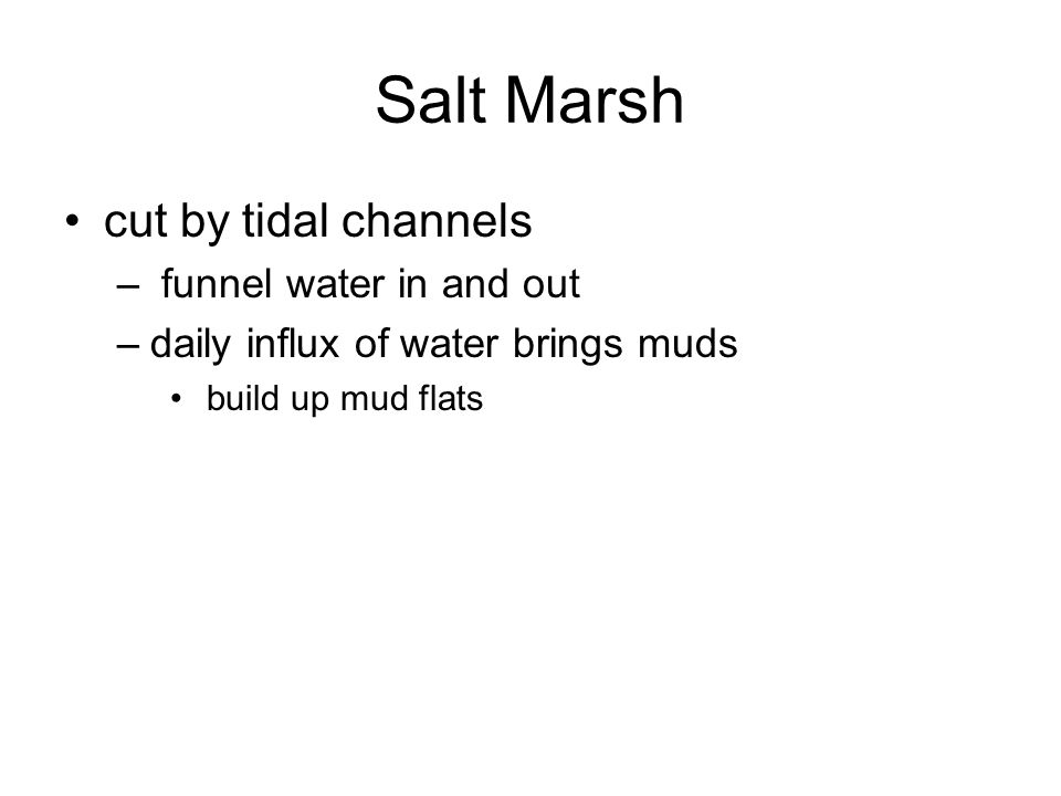 Tidal channels –funnels water into single or multiple channels –currents can scour base –also meander and can cause walls to fail –lag of gravelly deposits (including shell material and mud clasts armored mud balls –form point bars similar to those in rivers BUT have fine material on top of sloping bar surface alternations of sand and mud on bar deposits –tidal channel has lag; channels generally cut down a few meters at least channel abandoned and finer sediments infill