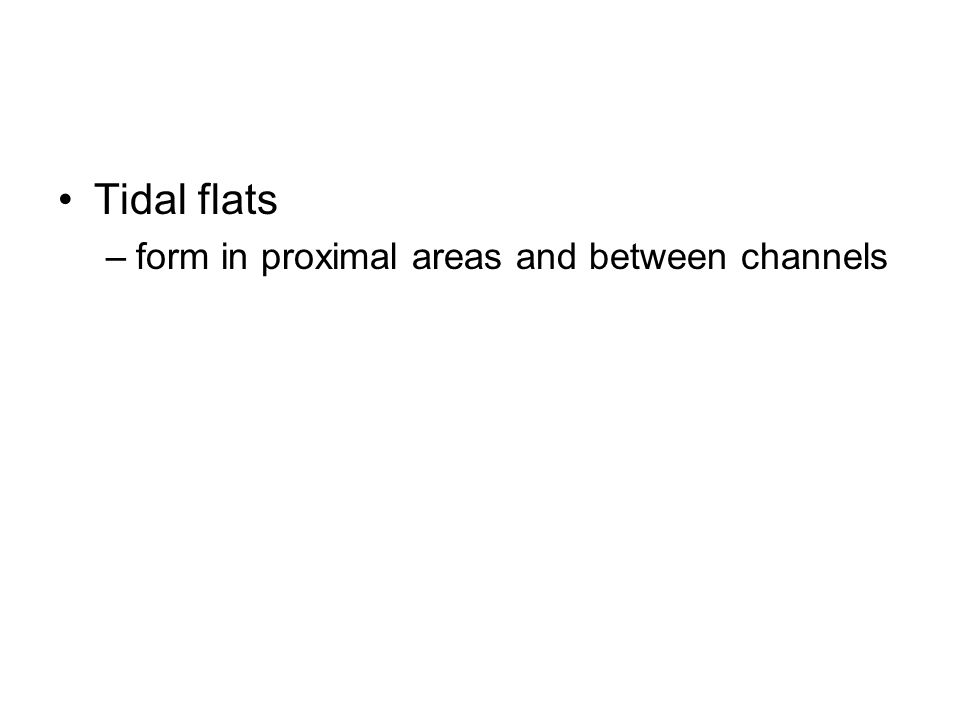 Tidal flats –form in proximal areas and between channels