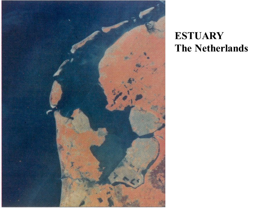 ESTUARY The Netherlands