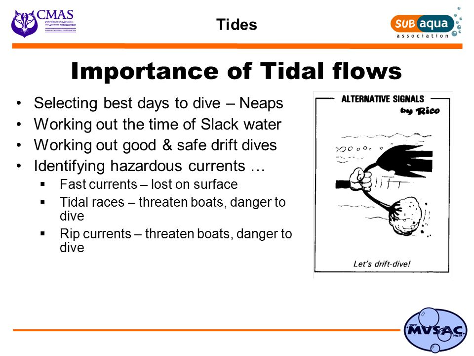 Tides Importance of Tidal flows Selecting best days to dive – Neaps Working out the time of Slack water Working out good & safe drift dives Identifying hazardous currents …  Fast currents – lost on surface  Tidal races – threaten boats, danger to dive  Rip currents – threaten boats, danger to dive