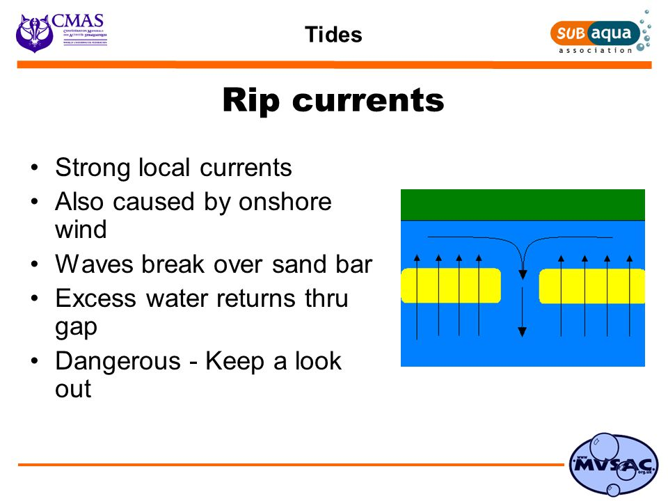 Tides Rip currents Strong local currents Also caused by onshore wind Waves break over sand bar Excess water returns thru gap Dangerous - Keep a look out