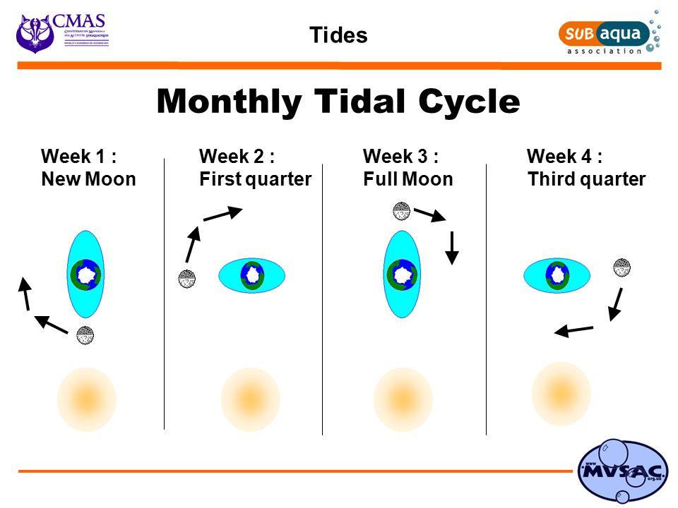 Tides Monthly Tidal Cycle Week 1 : New Moon Week 2 : First quarter Week 3 : Full Moon Week 4 : Third quarter