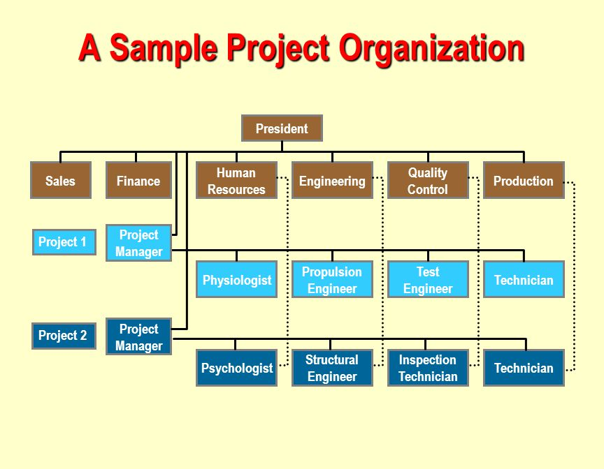 A Sample Project Organization Sales President Finance Human Resources Engineering Quality Control Production Technician Test Engineer Propulsion Engineer Physiologist Project Manager Psychologist Structural Engineer Inspection Technician Project 1 Project 2 Project Manager