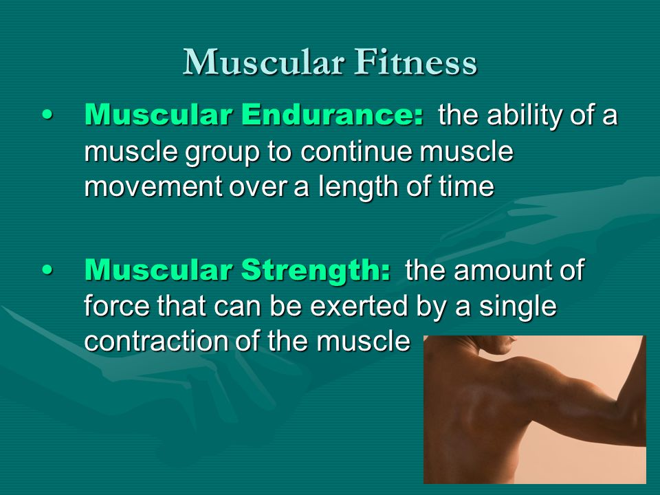 Muscular Fitness Muscular Endurance: the ability of a muscle group to continue muscle movement over a length of timeMuscular Endurance: the ability of a muscle group to continue muscle movement over a length of time Muscular Strength: the amount of force that can be exerted by a single contraction of the muscleMuscular Strength: the amount of force that can be exerted by a single contraction of the muscle