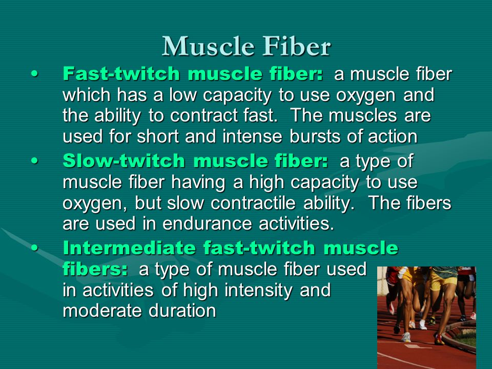 Muscle Growth Hypertrophy: the increase in muscle fiber size as a result of strength trainingHypertrophy: the increase in muscle fiber size as a result of strength training Atrophy: when a muscle becomes smaller because of non-useAtrophy: when a muscle becomes smaller because of non-use