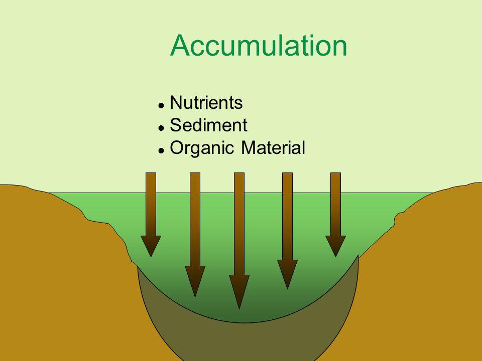Accumulation l Nutrients l Sediment l Organic Material