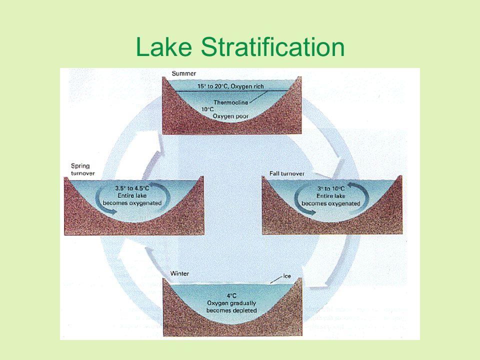 Lake Stratification