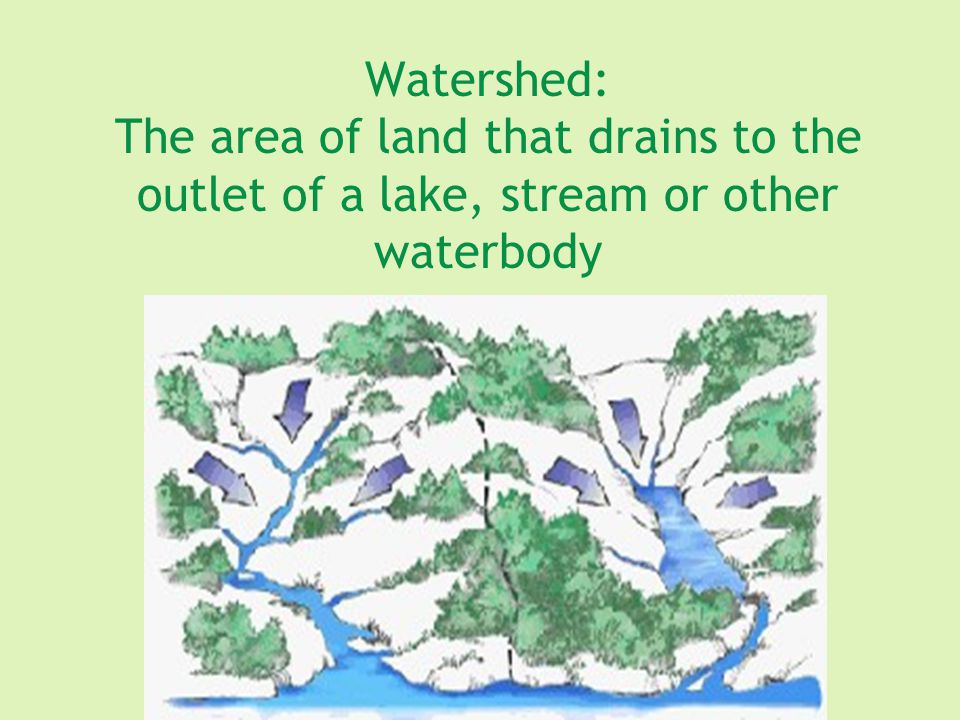 Limnology: Scientific study of freshwater ecosystems lakes, ponds, reservoirs, streams Goal: Improve understanding of the physical, biological, chemical, and geological factors affecting these ecosystems