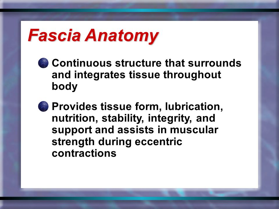 Continuous structure that surrounds and integrates tissue throughout body Fascia Anatomy Provides tissue form, lubrication, nutrition, stability, inte