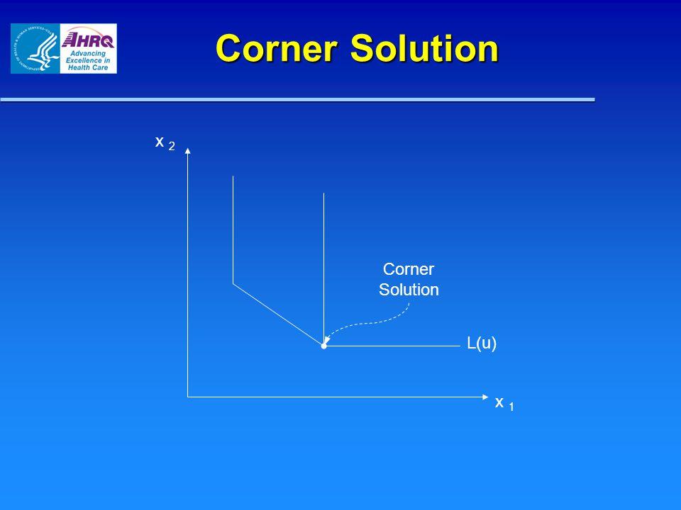 Corner Solution x 2 x 1 L(u) Corner Solution