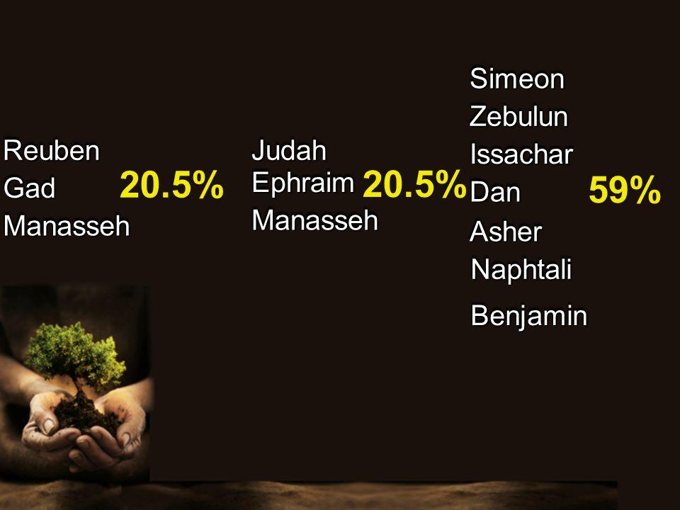 ReubenReuben SimeonSimeon JudahJudah ZebulunZebulun IssacharIssachar DanDan GadGad AsherAsher NaphtaliNaphtali BenjaminBenjamin EphraimEphraim ManassehManasseh 20.5% 59% ManassehManasseh 20.5%
