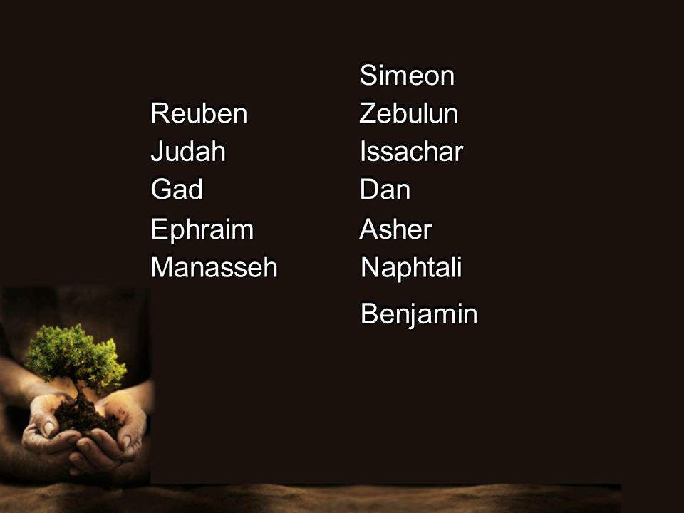 ReubenReuben SimeonSimeon JudahJudah ZebulunZebulun IssacharIssachar DanDanGadGad AsherAsher NaphtaliNaphtali BenjaminBenjamin EphraimEphraim ManassehManasseh