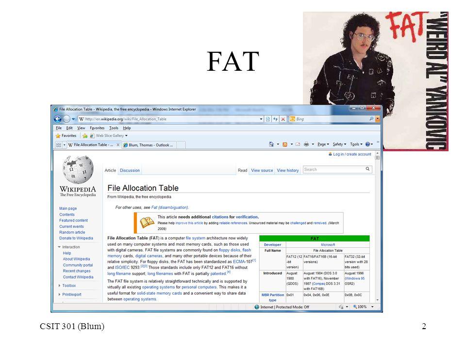 FAT CSIT 301 (Blum)2
