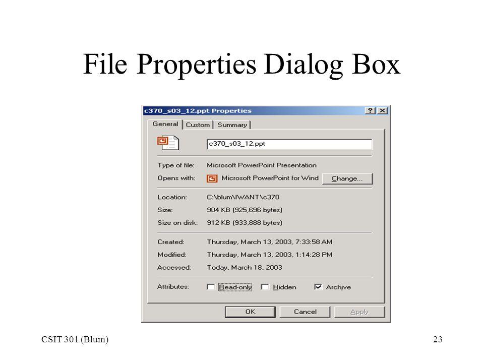 CSIT 301 (Blum)23 File Properties Dialog Box