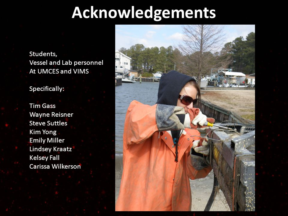 Acknowledgements Students, Vessel and Lab personnel At UMCES and VIMS Specifically: Tim Gass Wayne Reisner Steve Suttles Kim Yong Emily Miller Lindsey Kraatz Kelsey Fall Carissa Wilkerson