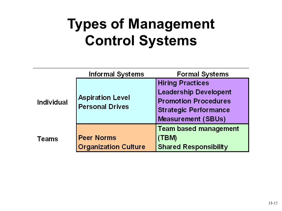 18-15 Types of Management Control Systems