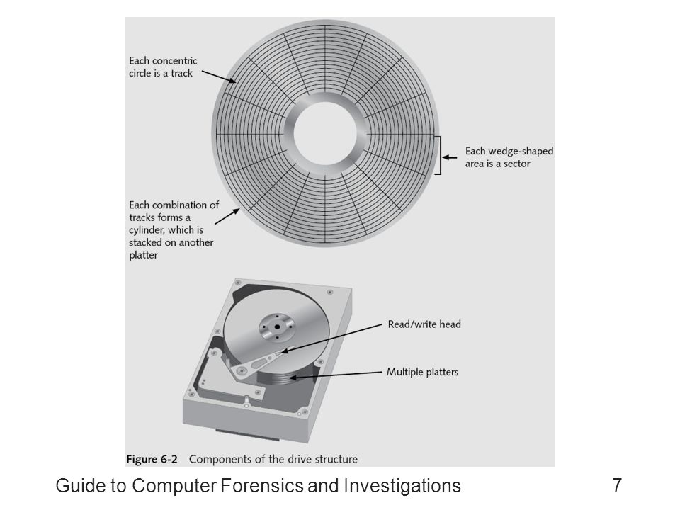 Guide to Computer Forensics and Investigations7
