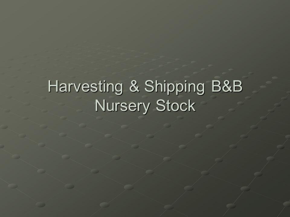 Harvesting & Shipping B&B Nursery Stock