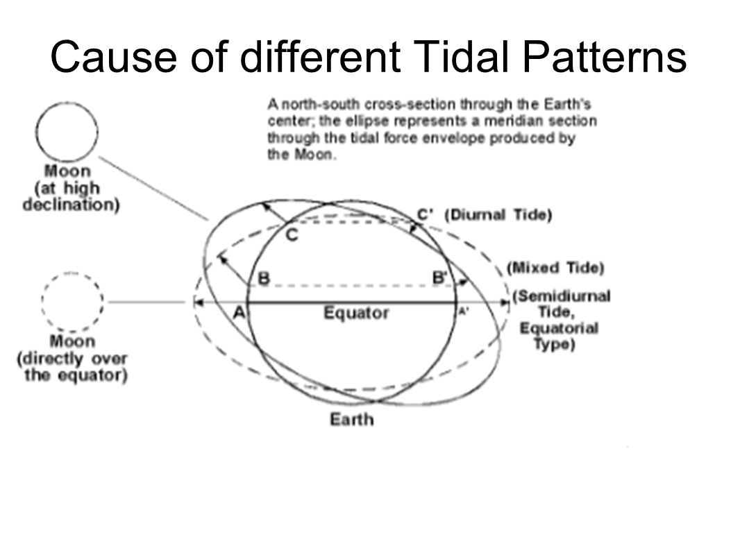 Tides for sea kayakers overview what is a tide types of tides 11 cause of different tidal patterns nvjuhfo Image collections