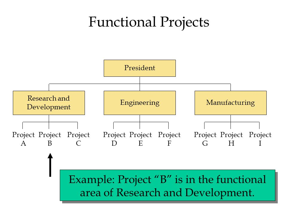 Functional Projects President Research and Development EngineeringManufacturing Project A Project B Project C Project D Project E Project F Project G Project H Project I Example: Project B is in the functional area of Research and Development.