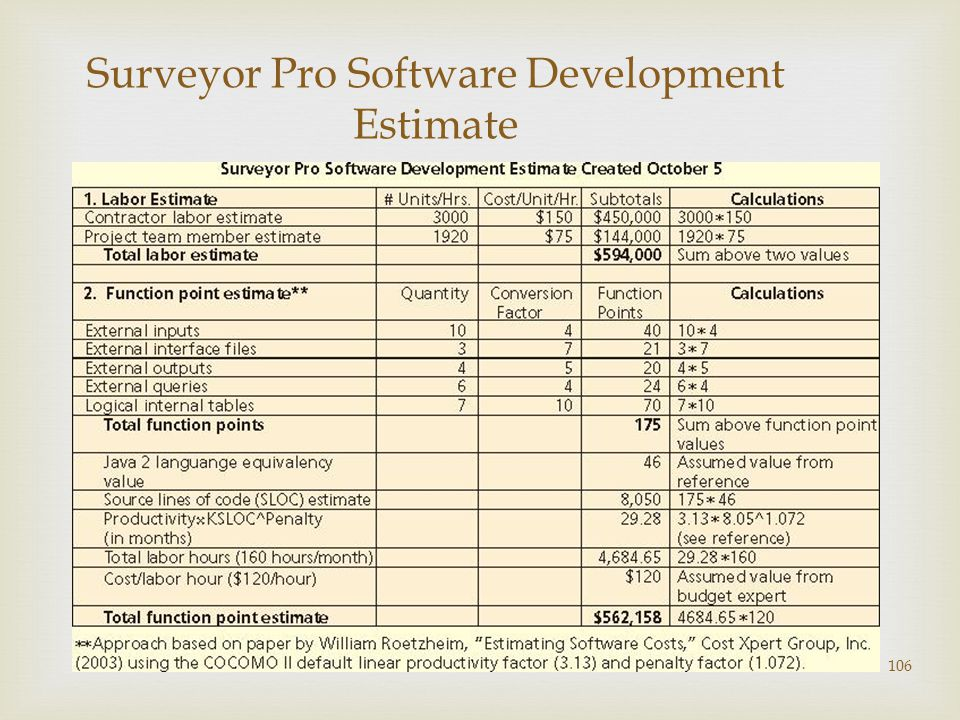 106 Surveyor Pro Software Development Estimate