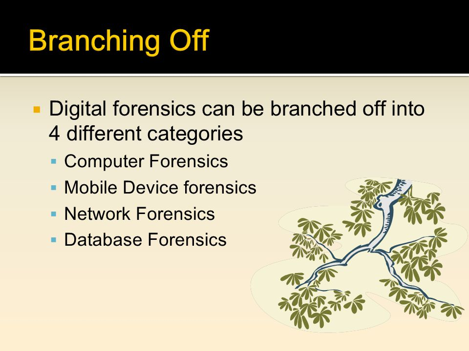  Digital forensics can be branched off into 4 different categories  Computer Forensics  Mobile Device forensics  Network Forensics  Database Forensics