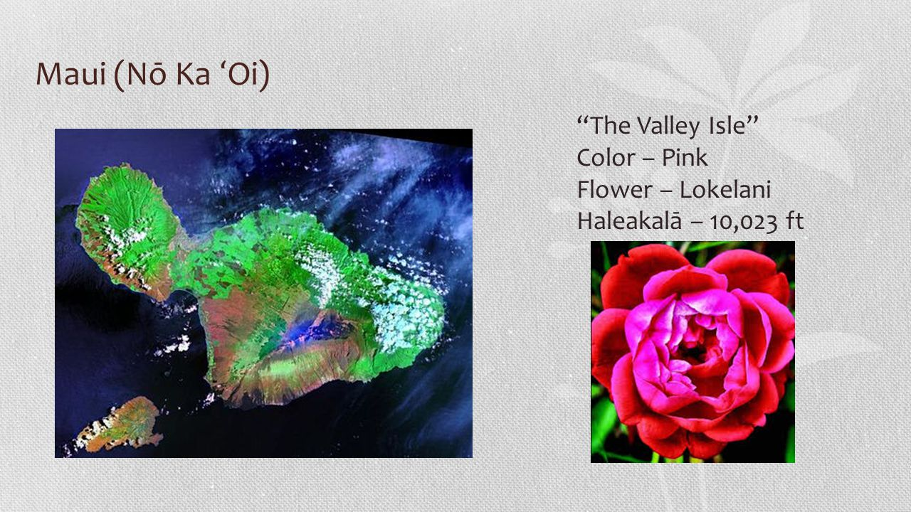 Maui (Nō Ka ʻ Oi) The Valley Isle Color – Pink Flower – Lokelani Haleakalā – 10,023 ft