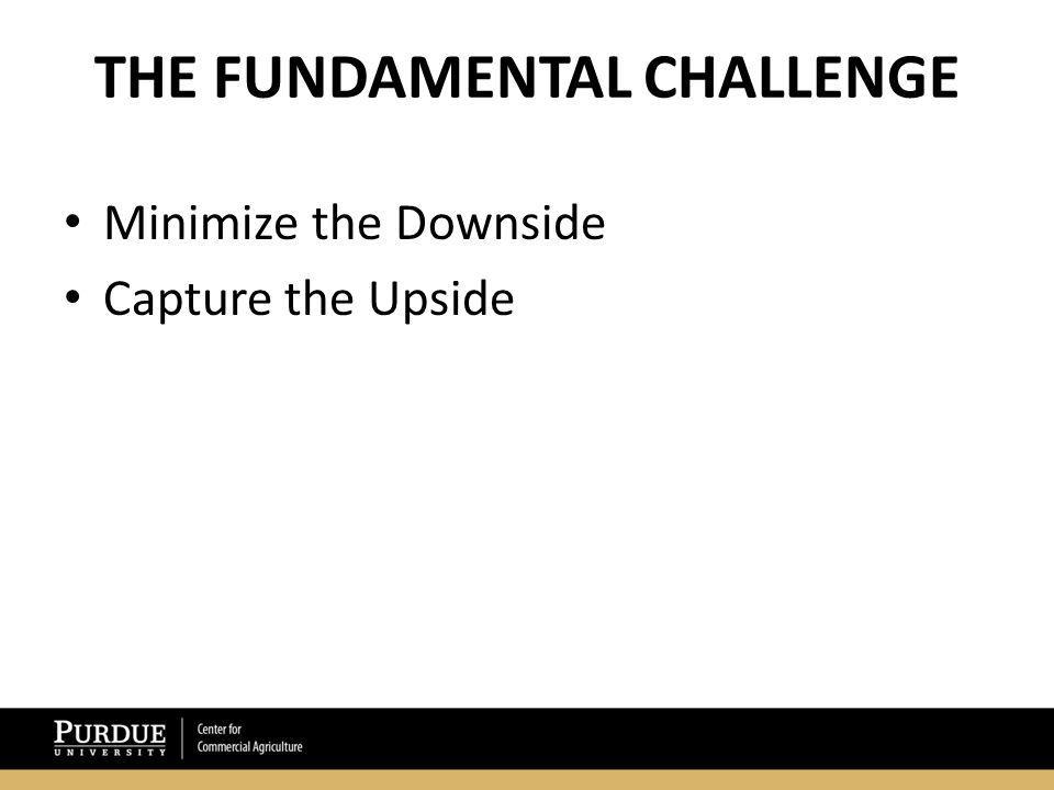THE FUNDAMENTAL CHALLENGE Minimize the Downside Capture the Upside