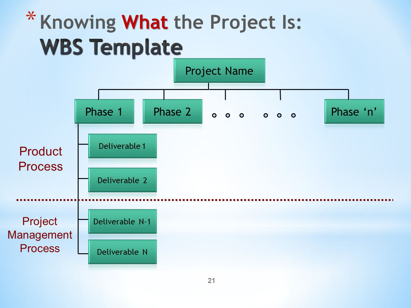 21 Product Process Project Management Process