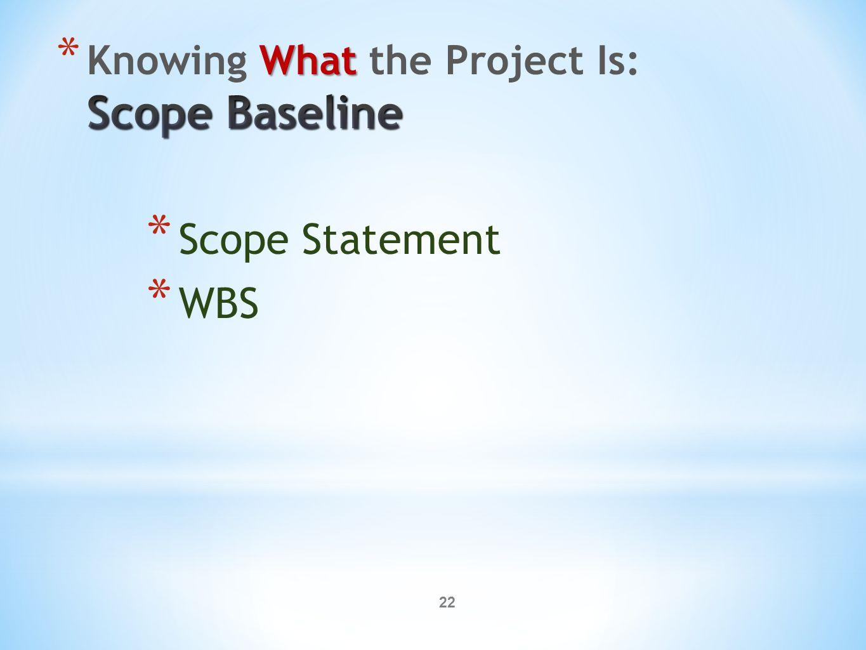 22 * Scope Statement * WBS