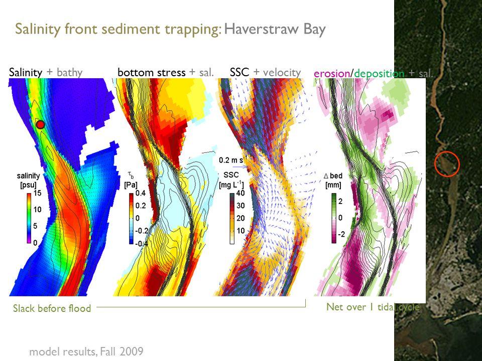 Salinity + bathy bottom stress + sal. SSC + velocity erosion/deposition + sal.