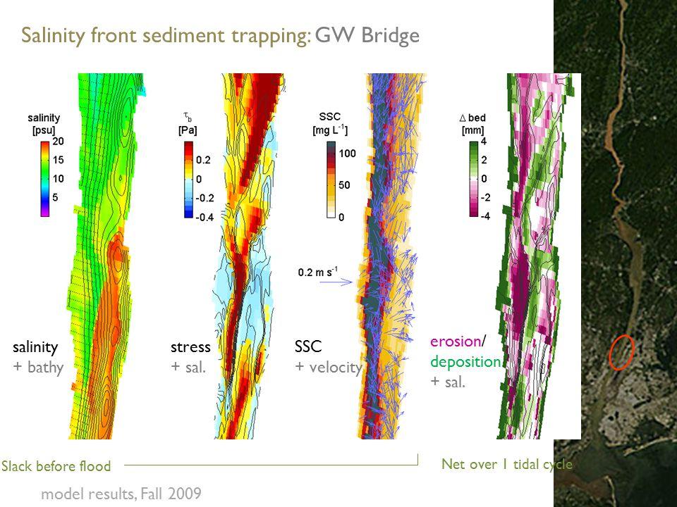 Slack before flood Net over 1 tidal cycle salinity + bathy stress + sal.