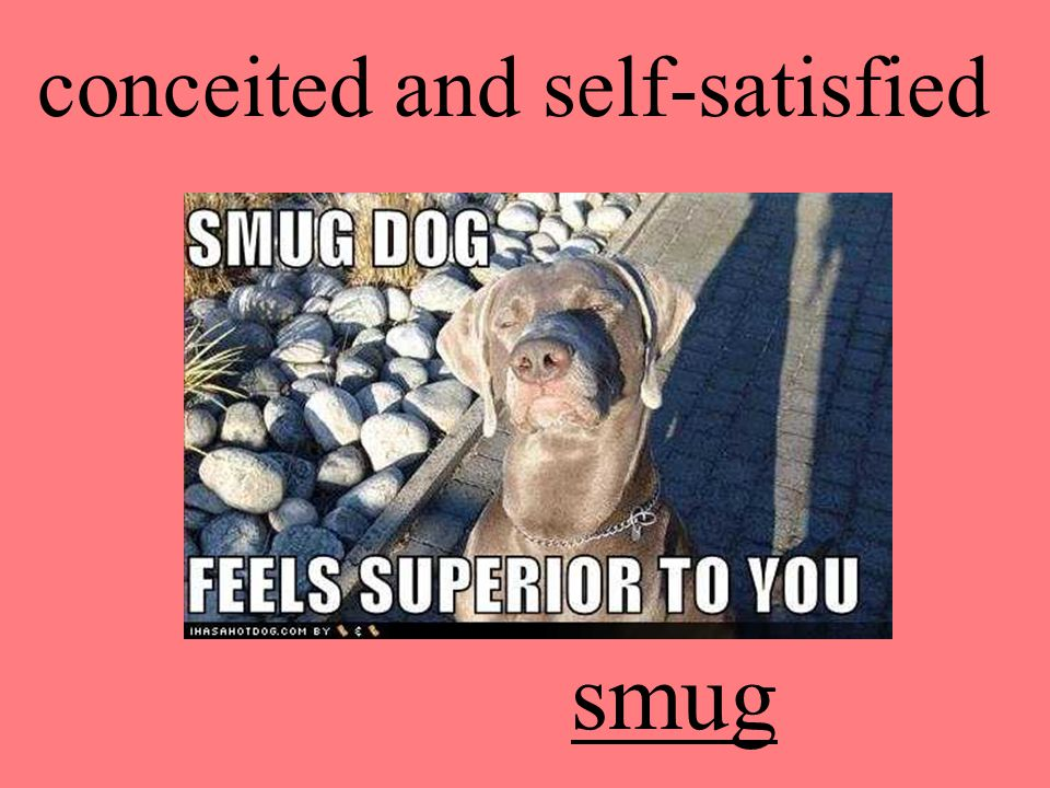 conceited and self-satisfied smug