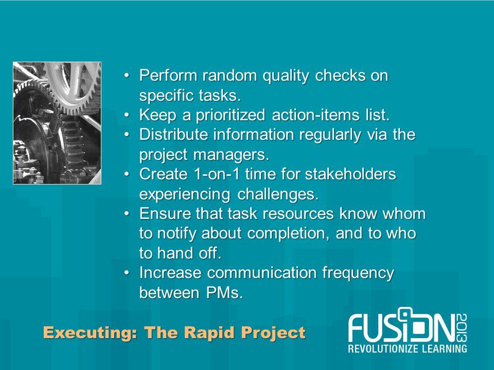 Executing: The Rapid Project Perform random quality checks on specific tasks.Perform random quality checks on specific tasks.