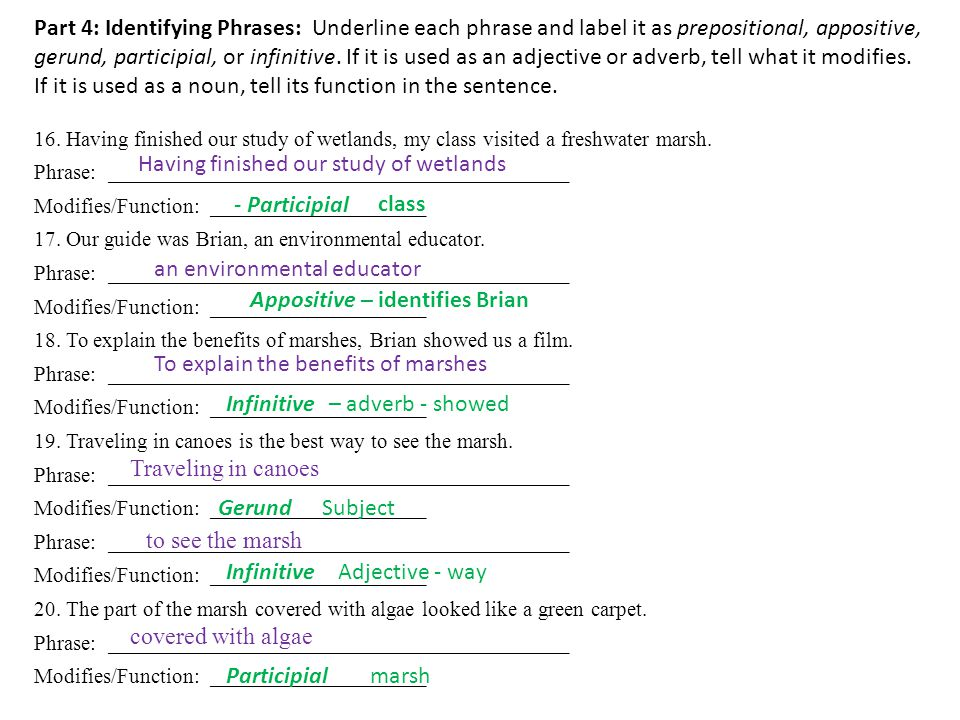 Part 4: Identifying Phrases: Underline each phrase and label it as prepositional, appositive, gerund, participial, or infinitive.