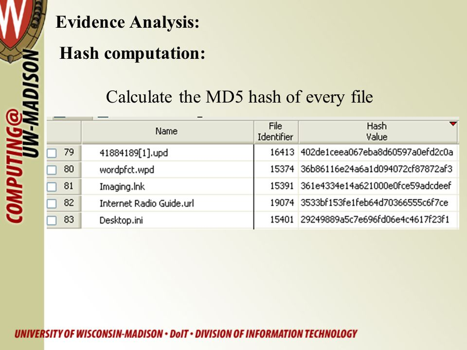Hash computation: Calculate the MD5 hash of every file Evidence Analysis: